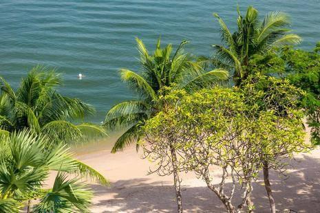 Garden Sea View