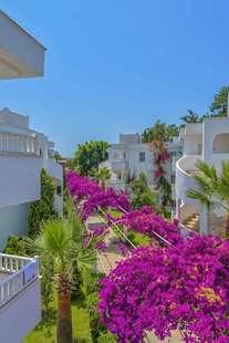 Bendis Beach Hotel