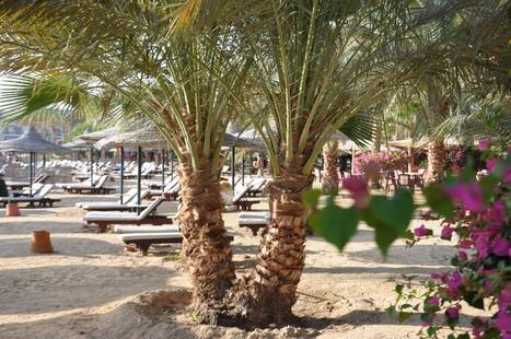 Brayka Bay Resort (Ex. Zee Brayka Bay Reef Resort)