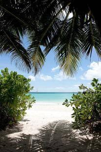 Acajou Beach Resort
