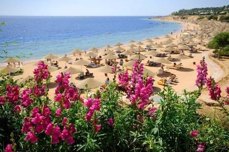 Domina Coral Bay Harem