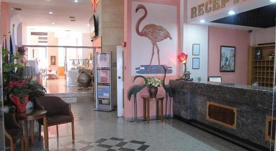 Flamingo Apts