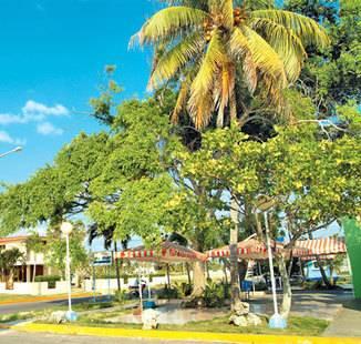 Villas Los Pinos