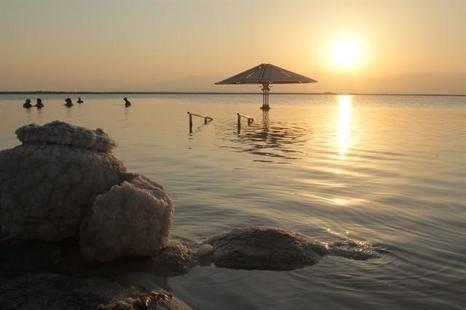 Orchid Dead Sea (Ex. Tsell Harim)