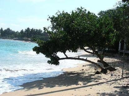 Fulmoon Beach Resort