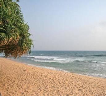 Dalawella Resort