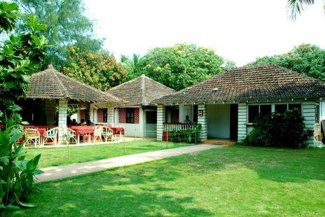 Seaview Cottages