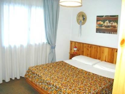 Apartment Alpi 2000