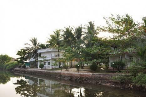Mandrem Beach Resort