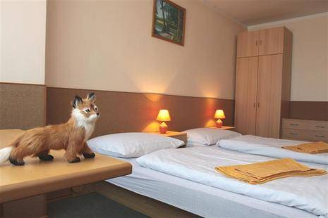 Pension Fox Hotel