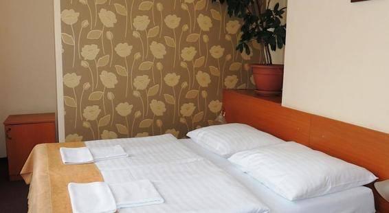 Novomestsky Hotel