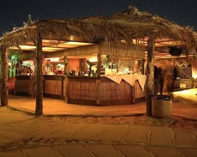 Cucaracha Hotel