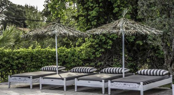 Pine Trees Art Hotel