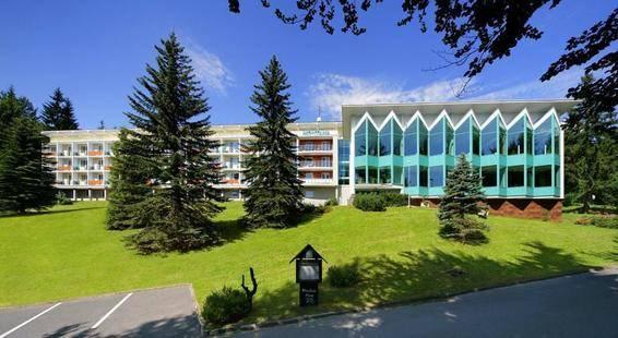 Interhotel Montana
