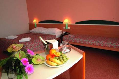 Ibis Praha Karlin Hotel