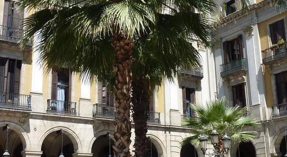 Roma Reial Hotel