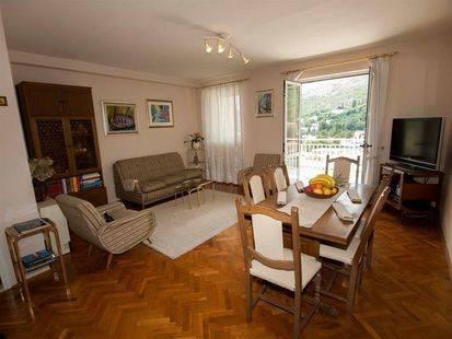 Apartment Panorama Rozat