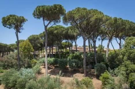 Les Jardins De St Maxime