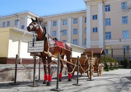 Отель 365 СПБ