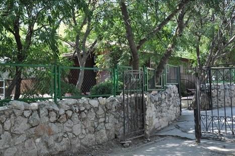 Отель Камелия Кафа