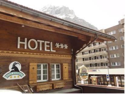 Steinbock Hotel