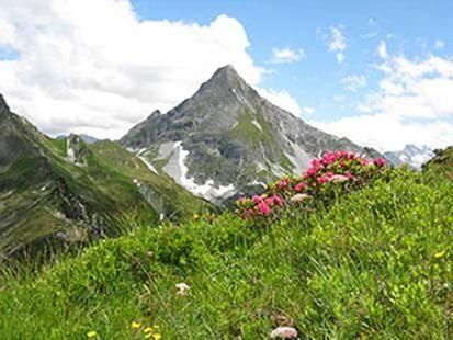 Alpengruss Gaestehaus