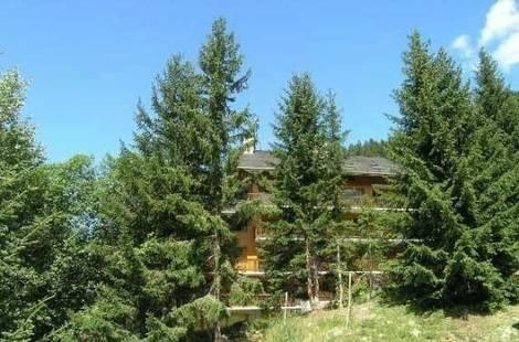 Foret Residence (Agence Des Neiges)