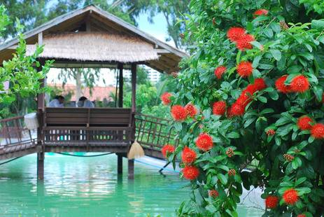 Birds & Bees Resort