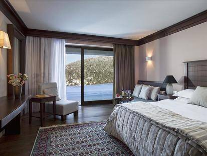 Grand Forest Metsovo Hotel