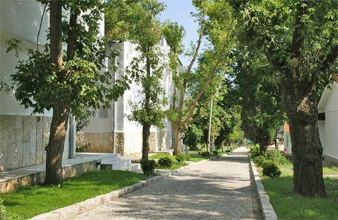 Saint Nikola Complex