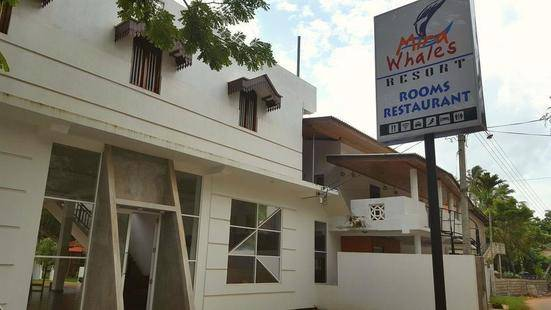 Mira Whales Resort