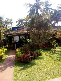 White Negro Beach Resort Guesthouse