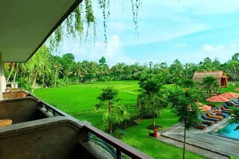 Artini Resort