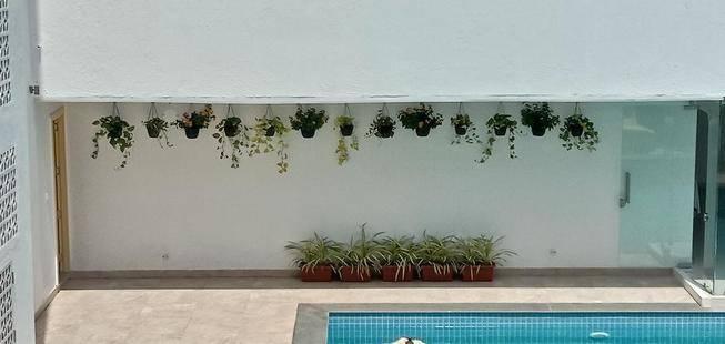 Bloom Rooms Candolim (Ex. Mumbai House)