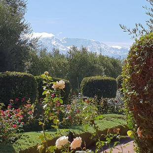 Les Jardins De Zyriab